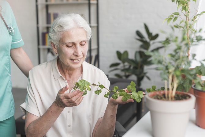 happy-senior-woman-looking-at-ivy-growing-in-pot